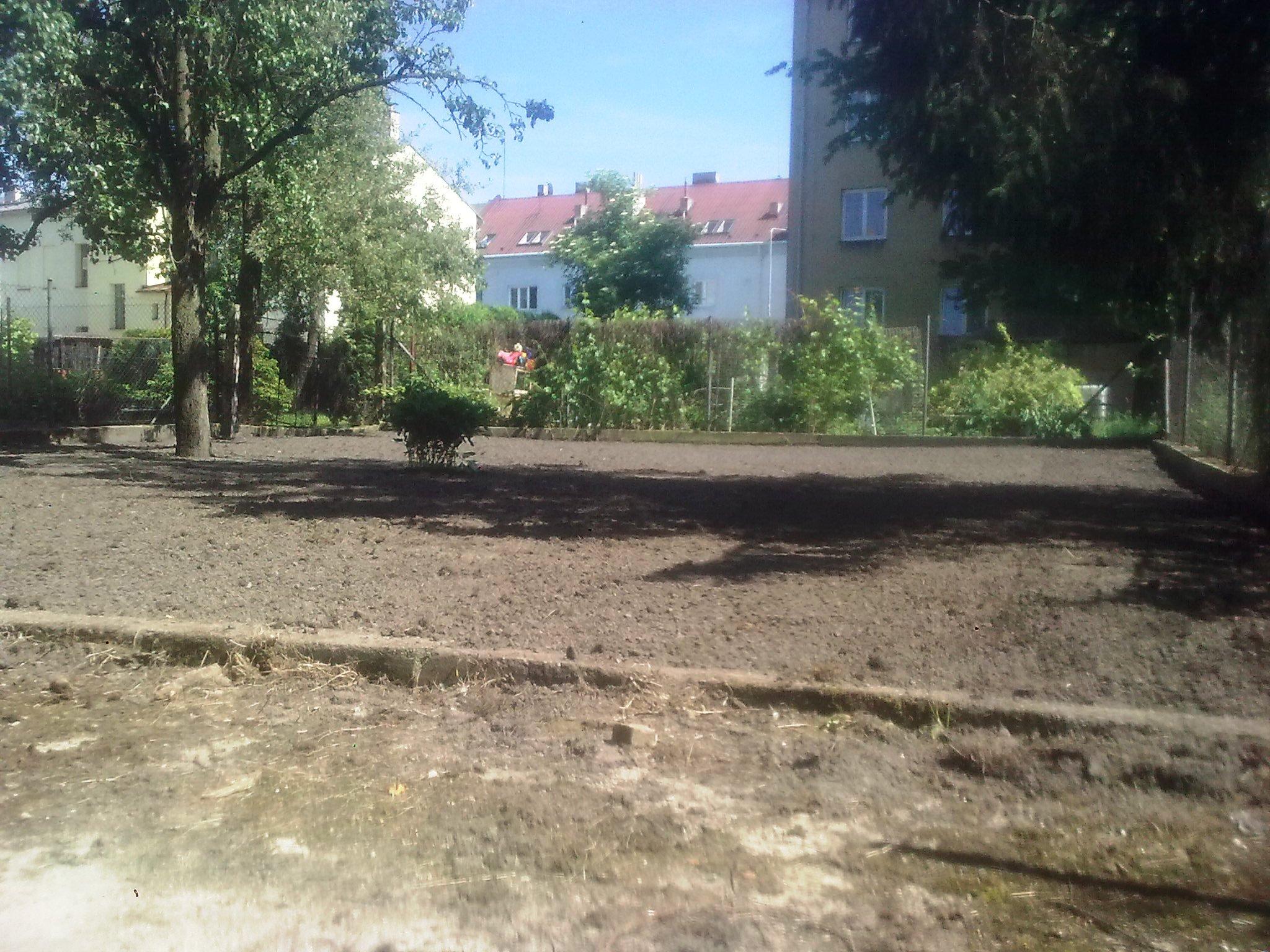 založení trávníku 1