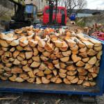 dřevo-krbové-2